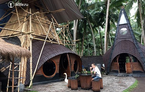 Решаем оставаться ещё на несколько месяцев на Бали, змеи около дома и как мы заблудились в джунглях