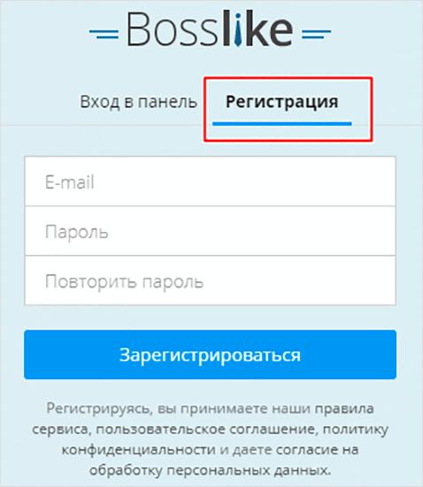 Поля заполнения регистрационных данных