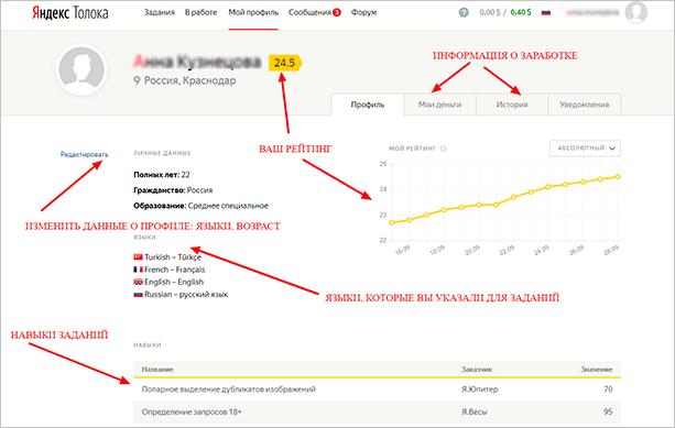Профиль в Яндекс Толоке