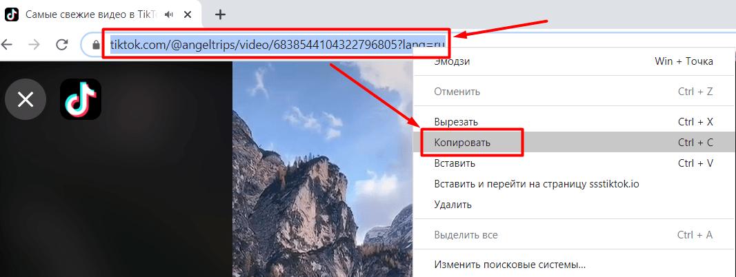 Копирование URL из адресной строки браузера