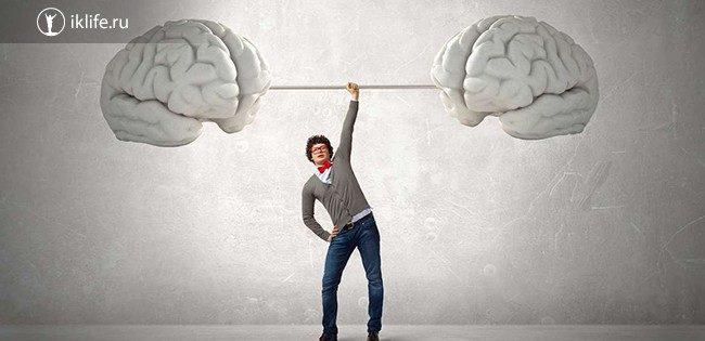Тренажеры для мозга