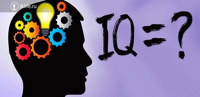 Что такое IQ у человека