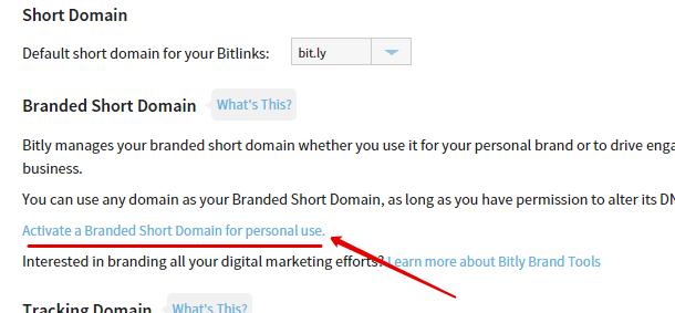свой домен в bit ly